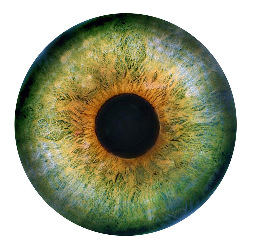 'Colliding Universes in Saint Peter's Four Meter Woollen Eye' by Arturo Muela, Paola Ibarra and Daniela Gutiérrez.